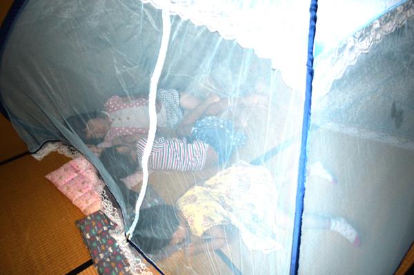 蚊帳子ども